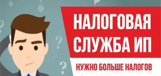 Главный смысл налоговая служба ИП. Нужно больше налогов. Бизнес с нуля Евгений Гришечкин