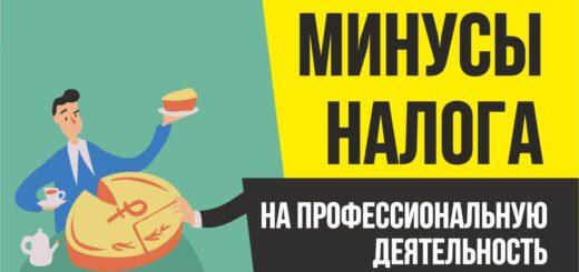 Минусы налог на профессиональную деятельность. Бизнес с нуля Евгений Гришечкин