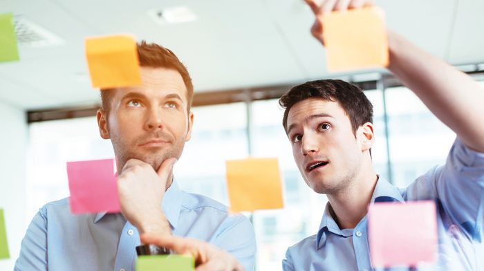 Создать общий бизнес с более опытным предпринимателем.